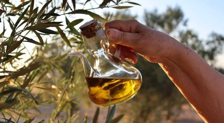 Rule That Prohibits Mixing Virgin Olive Oils From Different Campaigns Is Approved