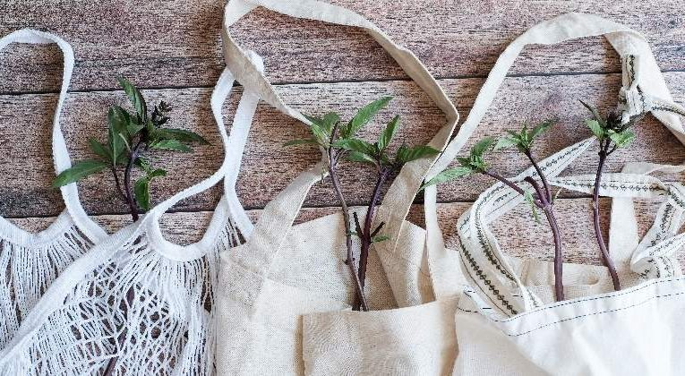 Hidden Side Of Everyday Sustainability: Cloth Bags Are Not Good For Environment